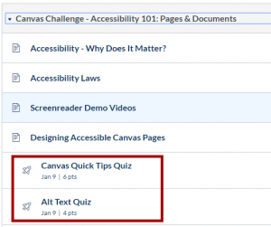 Canvas Module with quizzes